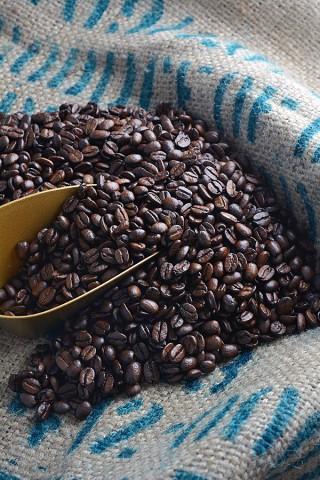 Kaffeebohnen 1-2