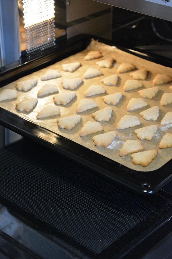 Lebkuchen Cracker 03